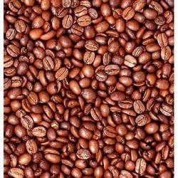 predaj-kávy-do-gastronómie-segafredo-zanetti